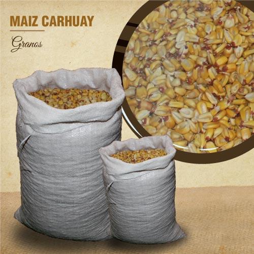 MAÍZ CARHUAY